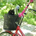 自転車かごのモコ