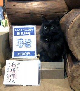 新得神社で販売している御朱印帳を宣伝するモコ